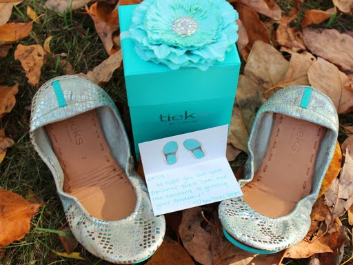 Tieks: Little Blue Sole