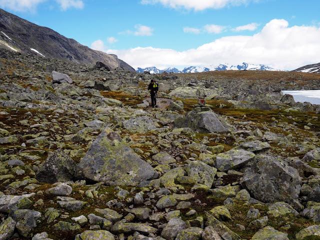 Kámen, přechod do údolí smrti, Rauddalen, Norsko, příroda