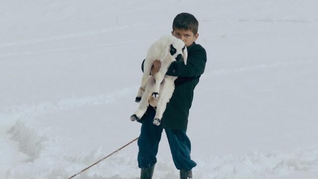 Το Αρνάκι του Κουτλούγ Αταμάν στην Κινηματογραφική Λέσχη Αλεξανδρούπολης