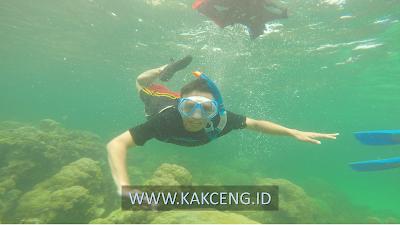 Cara Ke Pulau Abang Batam Snorkeling