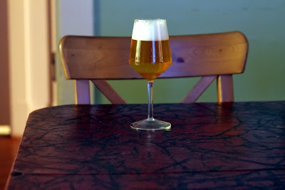A glass of golden 100% Brett nanus fermented beer.
