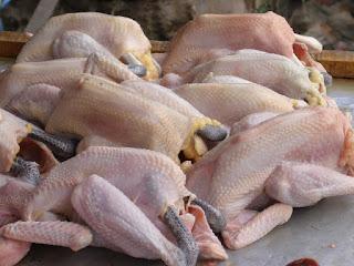 Ternyata! Makan 5 Bagian Ayam,Ini Seperti Menelan Racun