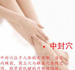 中封穴位 | 中封穴痛位置 - 穴道按摩經絡圖解 | Source:xueweitu.iiyun.com