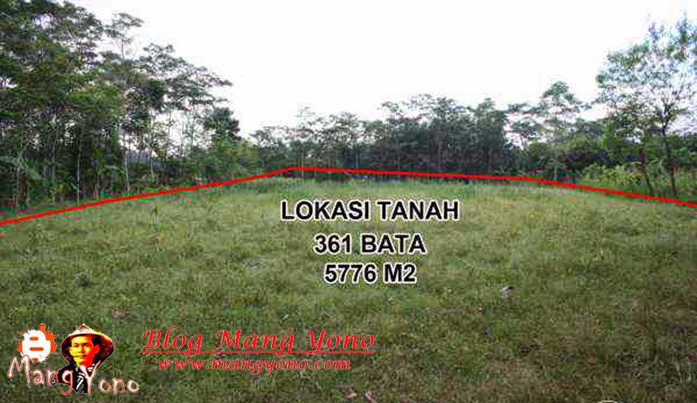 LUAS TANAH : 316 Bata / 5776 m2