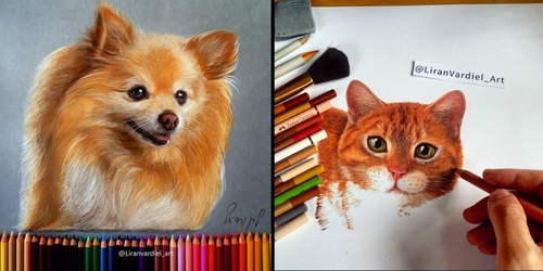00-Liran-Vardiel-Animal-Drawings-using-Colored-Pencils-www-designstack-co