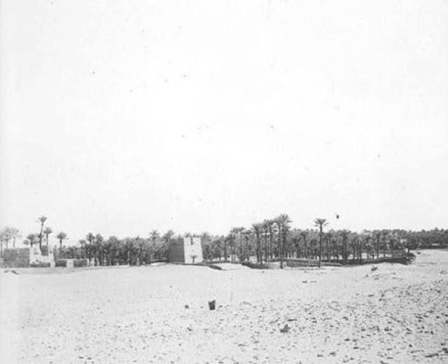 واحة تيماء 1909م