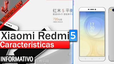 Xiaomi Redmi 5, Xiaomi Redmi 5 novedades, Xiaomi Redmi 5 caracteristicas, Xiaomi Redmi 5 especificaciones