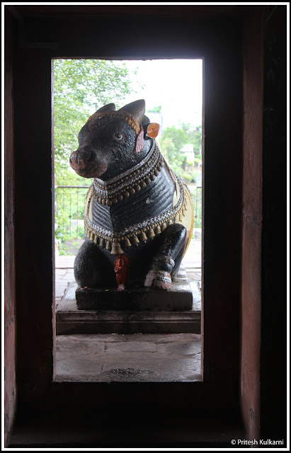 Nandi at Sangameshwar Temple, Saswad