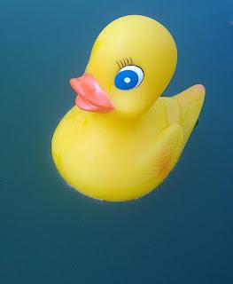 Hier Badet Agathe auf einem Teich.