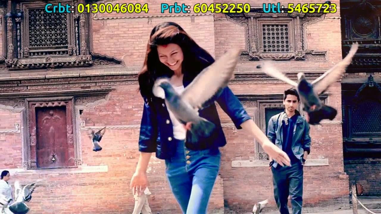 Ajay Tamang - MP3 Songs Free Download   Nepali Movie, New