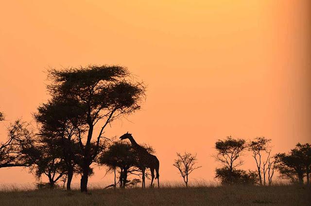 Tanzania, Sabela Montero de Viajando Imágenes y Sensaciones