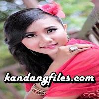 Dilla Novera - Tapasuang Cinto Talarang (Full Album)