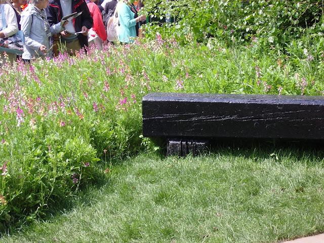 drewniana ławka i łąka kwietna, ogród naturalistyczny