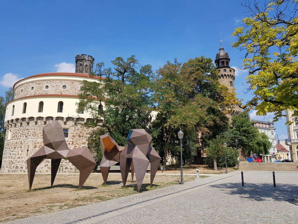 Co zobaczyć w Goerlitz? Muzeum Bastion Kaisertrutz i wieża obronna Reichenbach
