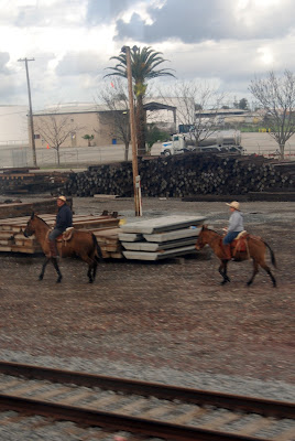 cowboys on mules by railroad tracks caroline gerardo donkey