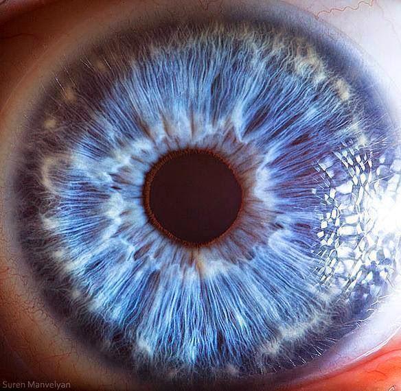 insan gözü