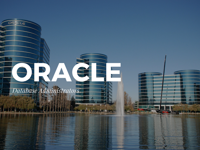 What Services Can you Expect from a Good Remote Oracle DBA?