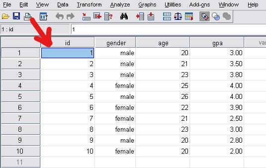 sort data using spss