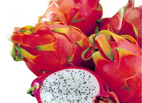 Dragon Fruit Cultivation