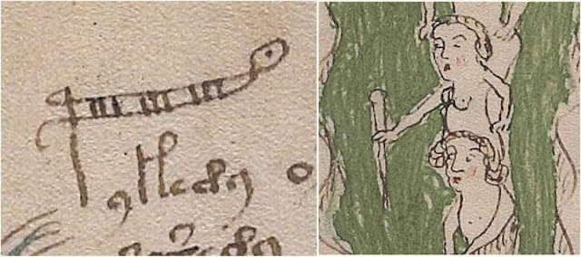 Academic cracks Voynich code, solving century-old mystery of medieval text