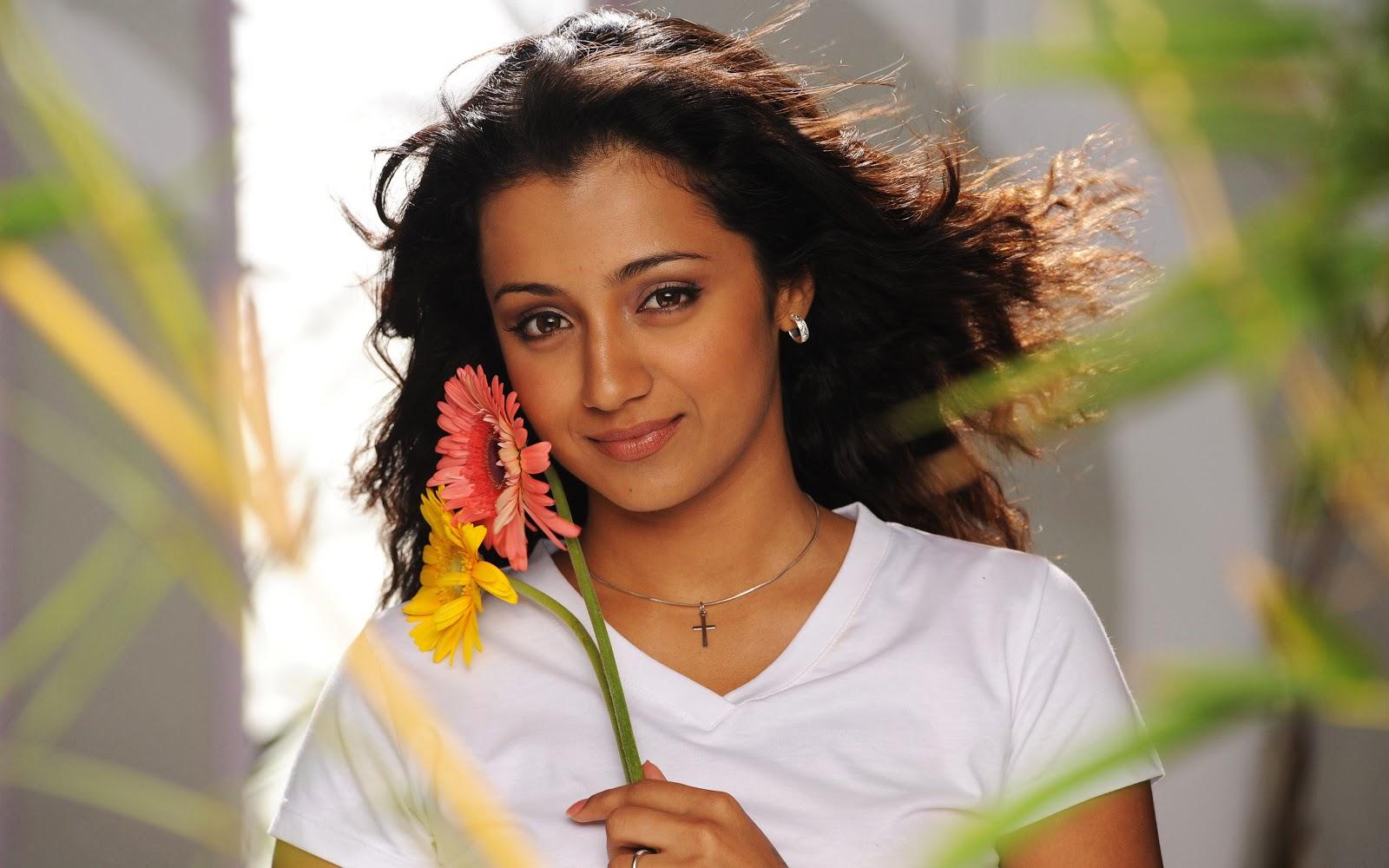 actress 1080p bollywood wallpapers indian south trisha hollywood actor film