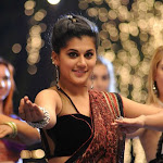 Tapsee in   Saree & Sleeveless Blouse  Cute Pictures