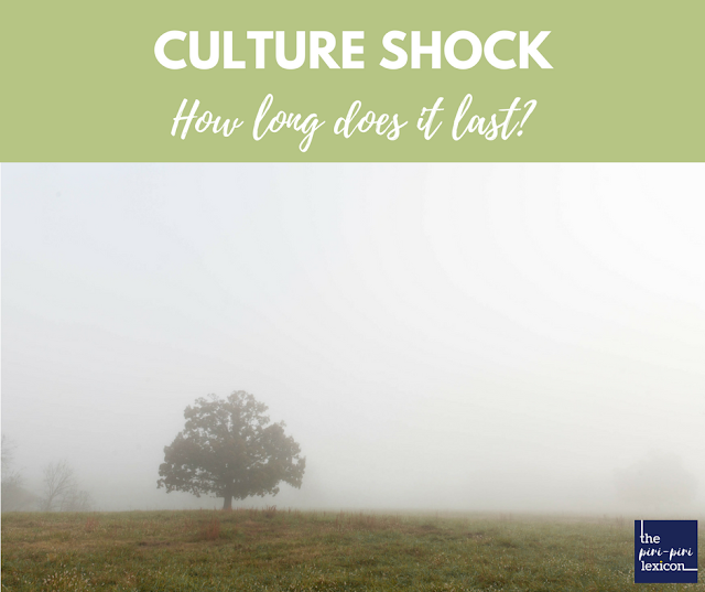 Culture Shock: how long does it last?