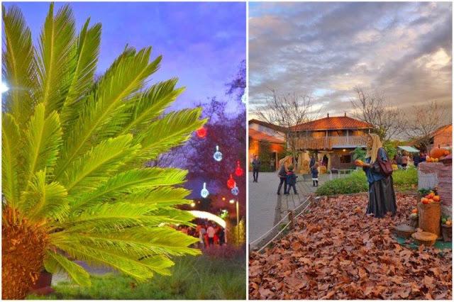 Navidad en el Jardín Botánico Atlántico de Gijón – Parte del belén navideño