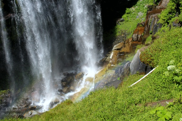 misty narada falls mt rainier ali biorn photography