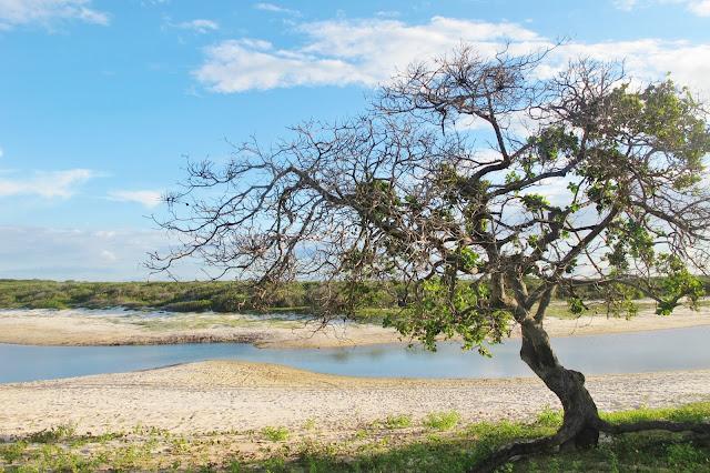 Lagoa seca, em Camocim, na Rota das Emoções