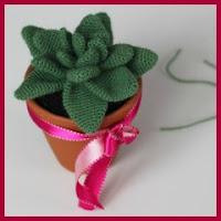 cactus amigurumi de hojas anchas