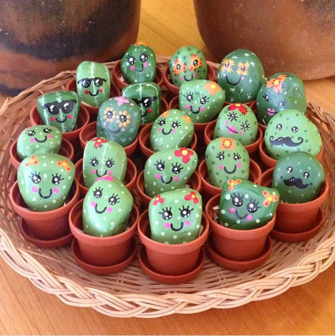 pet cactus rocks with adorable faces