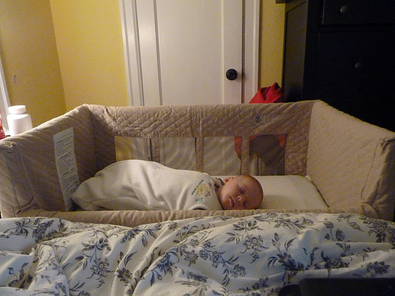 Little Bird Loves And Recommends Arms Reach Co Sleeper
