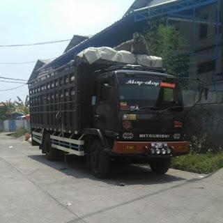 Jenis truk di Indonesia (fuso)