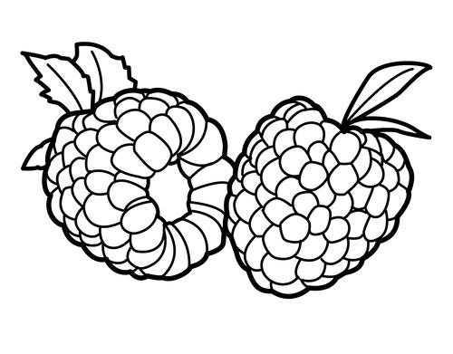 dibujos de frambuesas para colorear