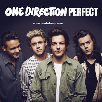 perfect one direction