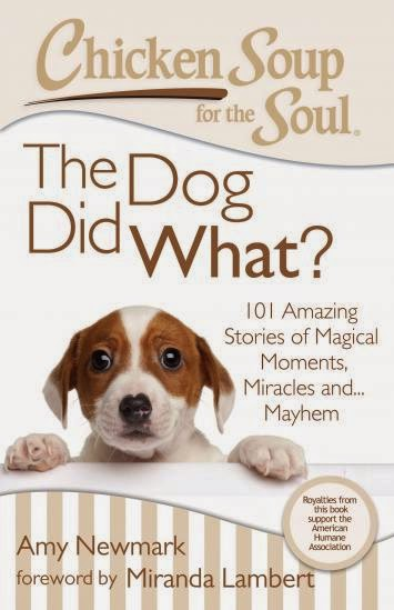 The Dog Did What? Chicken Soup for the Soul Book Review