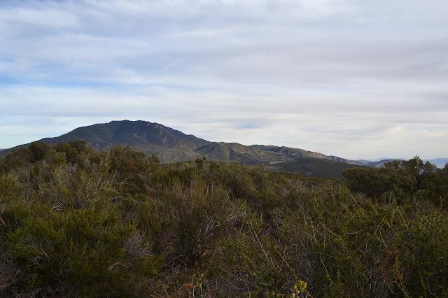 Toro Mountain