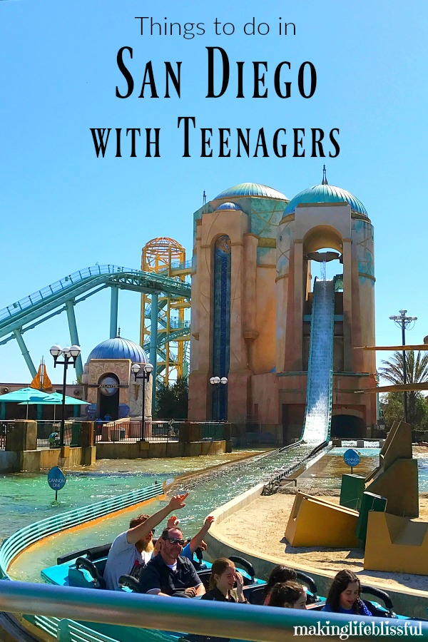 Get Ready To Find Some Fun Activities Do With Your Teenagers In San Diego