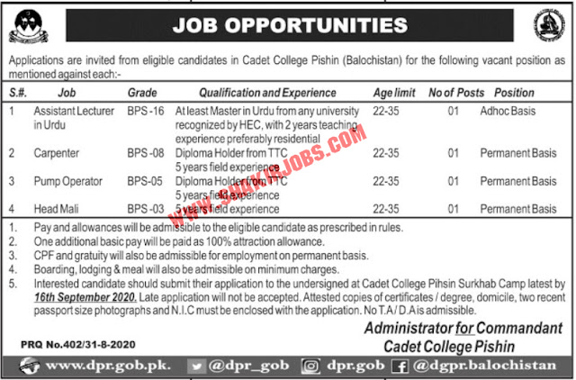 Jobs in Pakistan Army Cadet College Jobs September 2020