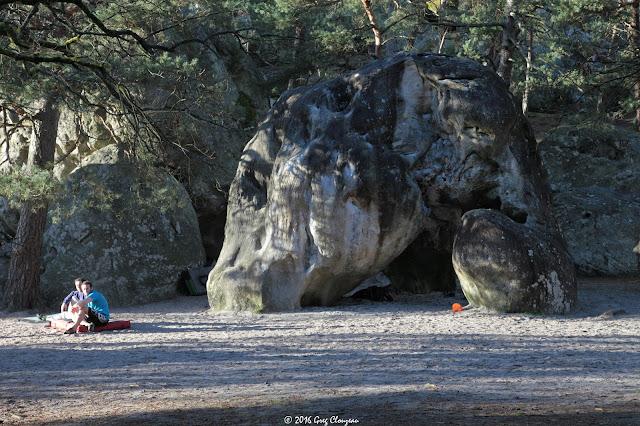 Au rocher de l'éléphant, Larchant, (C) 2016 Greg Clouzeau