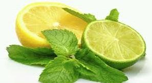 www.Ada Beberapa Manfaat Jeruk Lemon Yang Baik Untuk Kesehatan