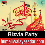 http://www.humaliwalayazadar.com/2014/10/rizvia-party-nohay-1993-to-2015.html