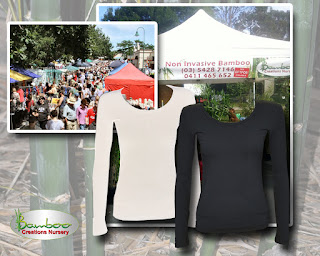 Bamboo creations victoria selling warm winter bamboo womens long sleeve t-shirts.