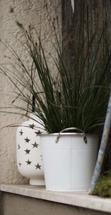 Blog + Fotografie by it's me! - Hauseingang im Februar - Gras im weißen Übertopf mit einer Sternenlaterne im Hintergrund