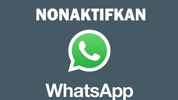 Cara Menonaktifkan Aplikasi Whatsapp (Wa) Di Hp Android Tanpa Root