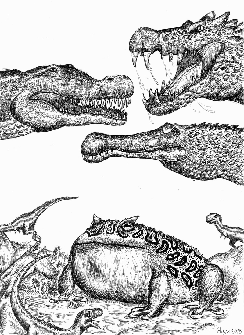 09-Horned-Frog-and-Crocodiles-Dušan-Krtolica-Душан-Кртолица-Drawing-Animals-and-Insects-from-His-Memory-Bank-www-designstack-co