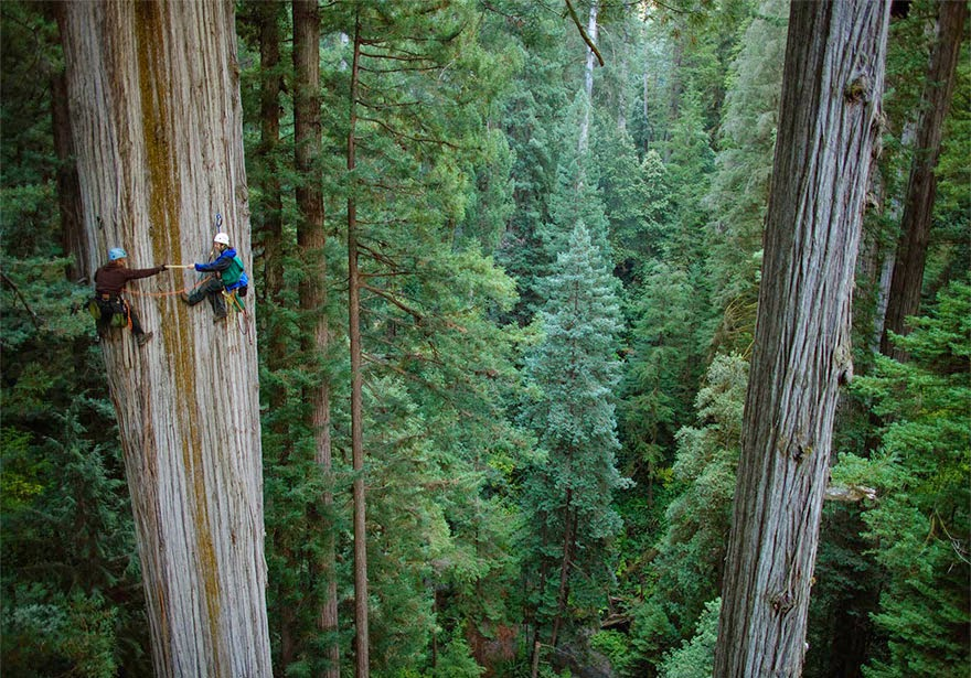 30 Death-Defying Photos That Will Make Your Heart Skip A Beat