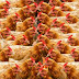 How To Deal With Heat Stroke In Poultry