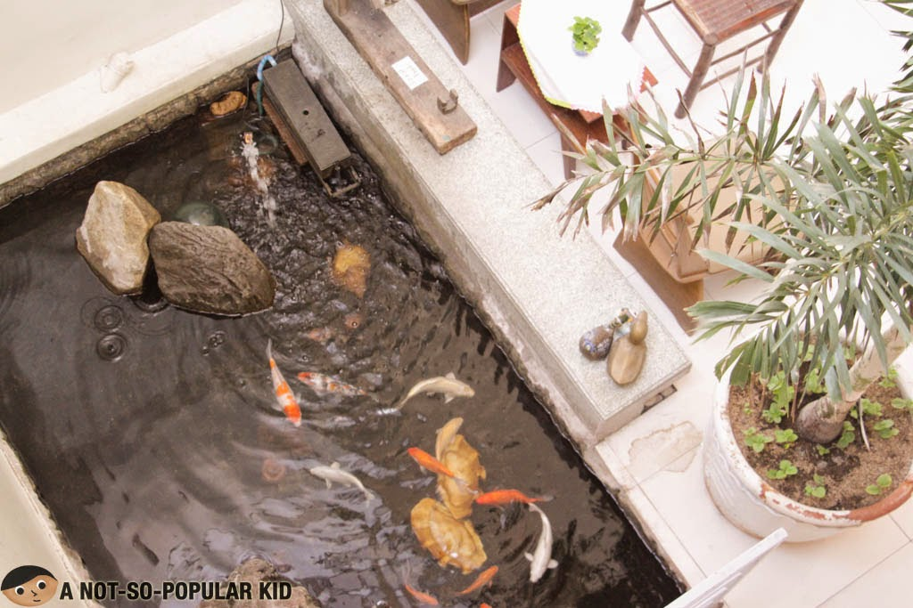 Koi pond inside the famous Balay da Blas in Laoag, Ilocos Norte